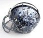 emmitt-helmetweb.jpg